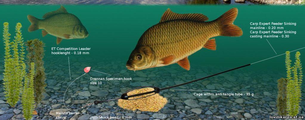 как узнать что рыба клюет на удочку