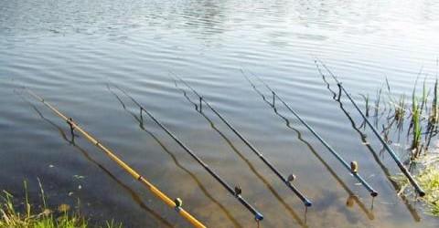 ловится ли рыба при северном ветре
