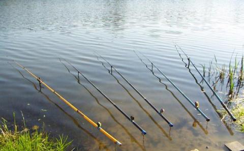Зимняя прикормка для рыбы своими руками